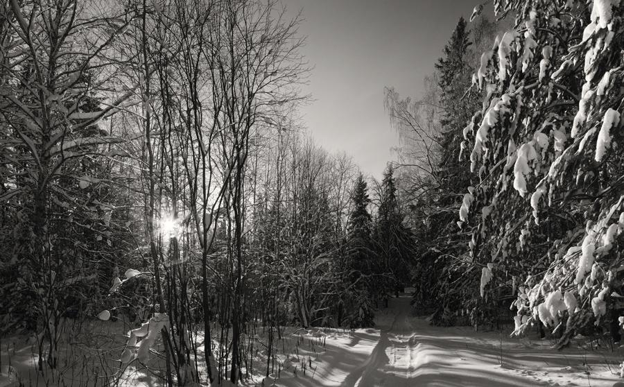 черно белые фотографии зимы творожный торт без