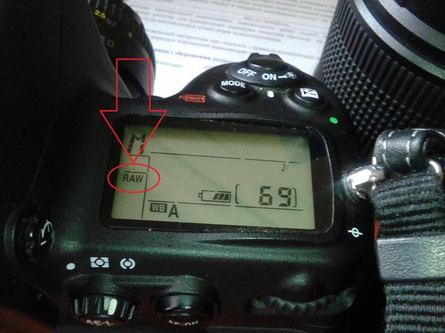 бицепсе как настроить фотоаппарат для съемки в студии квартир чайковский