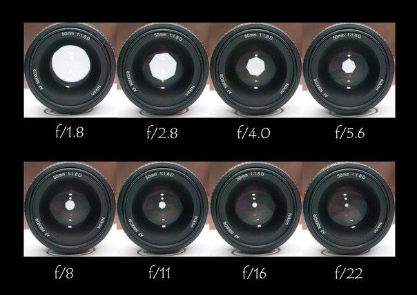 Как определить оптимальное значение диафрагмы для объектива - Фотожурнал